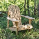 Georian Bay Adirondack Lodge stol  <br>  thumbnail